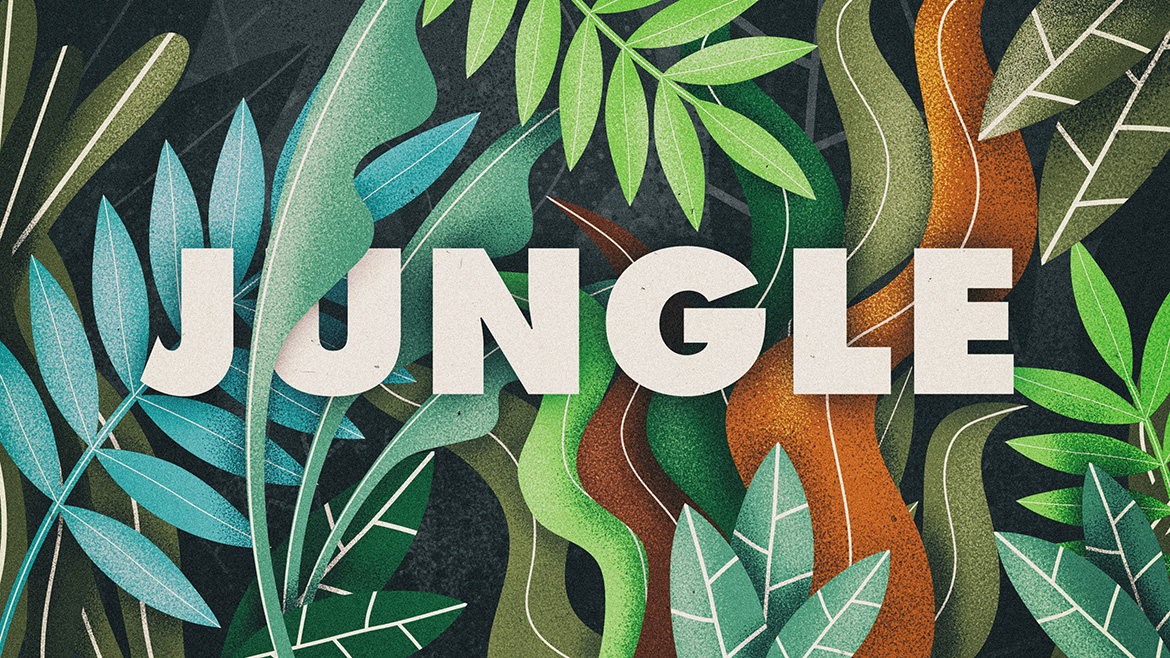 jungle-dirkjan.co_